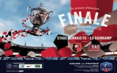 FRENCH CUP FINAL 2014